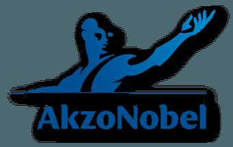 Satınalma-eğitimi-AKZO-nobel-logo